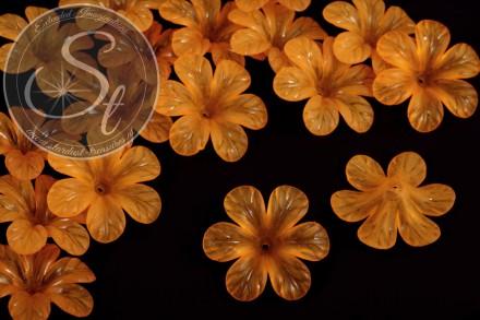 5 pcs. orange acrylic-flowers frosted 30mm-31
