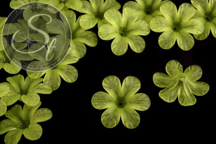 5 pcs. green acrylic-flowers frosted 30mm-31