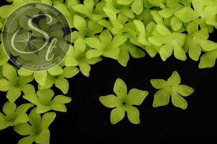 10 Stk. grüne Acryl-Blüten frosted 29mm-31
