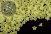 20 Stk. hellgrüne Acryl-Blüten frosted 10mm-20