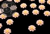 4 Stk. beige Blumen Cabochons 18mm-20